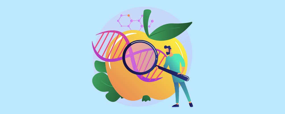 Concerns About Genetically Engineered Crops