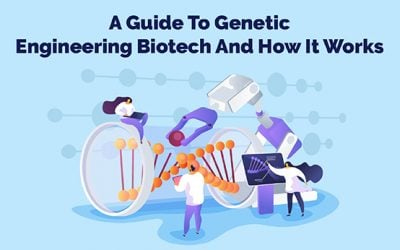 A Guide To Genetic Engineering Biotech And How It Works