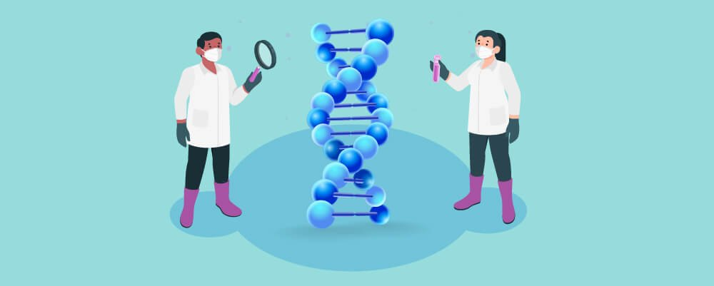 The function of a gene