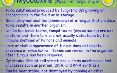A brief review of Mycotoxins